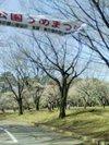 2007_2_15