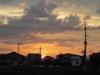 2008_5_20_0
