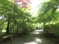 2010_5_5_12_2