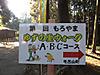 2011_11_23_5